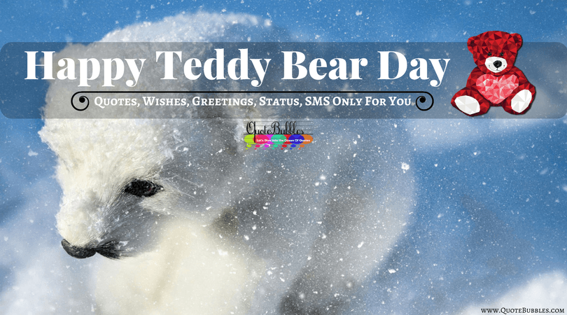 Happy Teddy Day Quotes, Images, Wishes,Status, Messages (SMS) In English For 2018